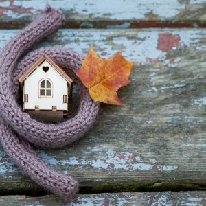 Scarf insulates miniature home outside