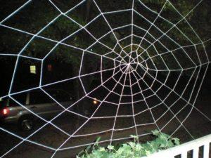 Spider Web Garage Door Image
